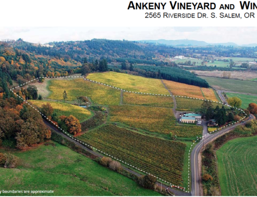 Ankeny Vineyard and Winery